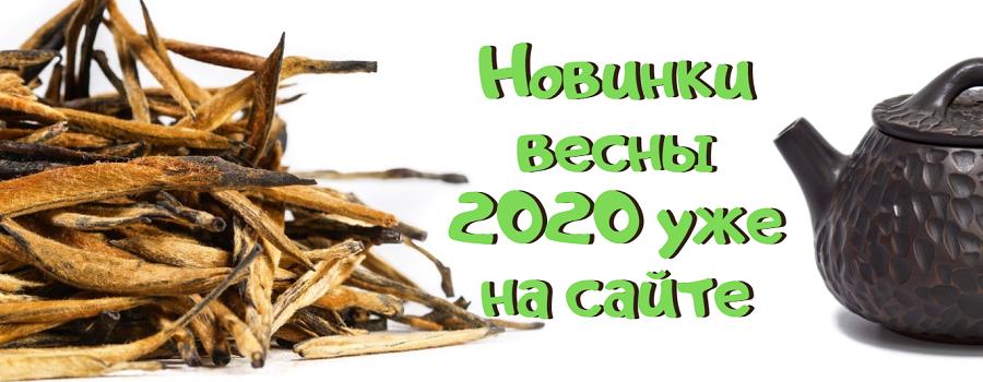 Novinki vesna 2020